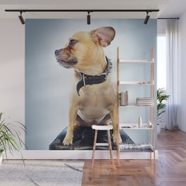 Super Pets Series 1 - Super Oaks Wall Mural