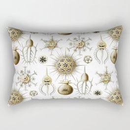 Ernst Haeckel - Phaeodaria Rectangular Pillow