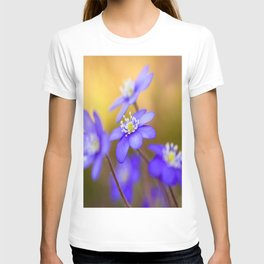 Spring Wildflowers, Beautiful Hepatica in the forest on a sunny and colorful background T-shirt