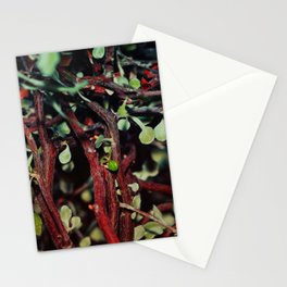 Another Tangle Stationery Cards