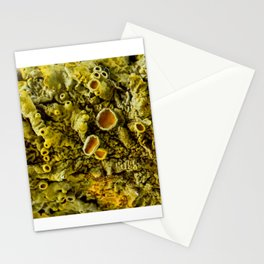 Lichen Texture 02 Stationery Cards