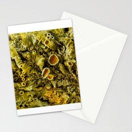 Lichen Texture 02 Stationery Cards