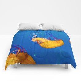 Orange Jellies Comforters