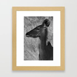 Profile Framed Art Print