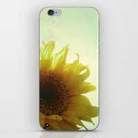 sunflower iPhone & iPod Skins featuring Sunflower by Cassia Beck