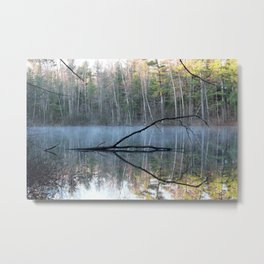 Reflections at Bluegill Pond Metal Print