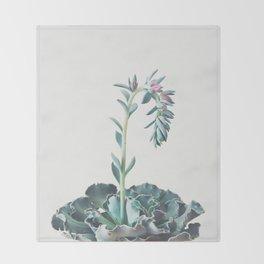 Flowering Succulent II Throw Blanket