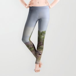 Truck and Helicopters Leggings