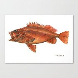 Vermilion Rockfish - Fish artwork watercolor Canvas Print