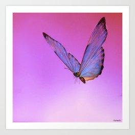 Papillon de nuit 2 Art Print
