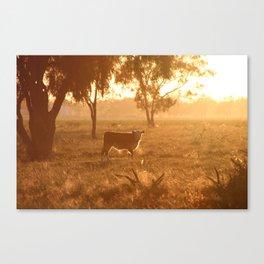 Caught in a Gaze Canvas Print