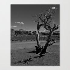 Desert Shadows Canvas Print