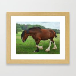 Shire Horse Mare Framed Art Print