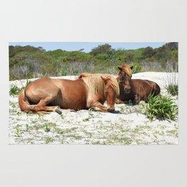 Wild Ponies of Assateague Having a Rest Rug