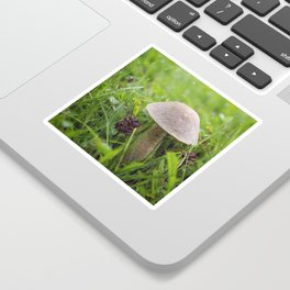 Mushroom in the Morning Dew by Althéa Photo Sticker