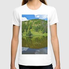 Lake Irene 2018 Study 4 T-shirt