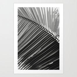 Sway - Modern Minimal Botanical Art Print