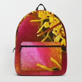 Christmas rose / Helleborus niger  Backpack
