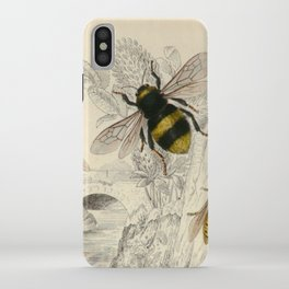 Naturalist Bee And Wasps iPhone Case