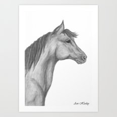 Horse Profile by Ave Hurley Art Print