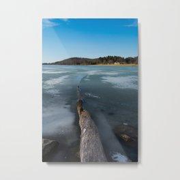 Keystone State Park - Fallen Tree Metal Print