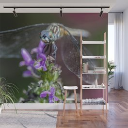 Blue eyed Dragonfly Wall Mural