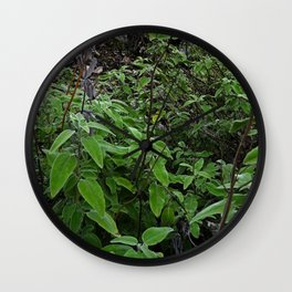 Wild Mountain Sage Wall Clock