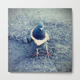 HipHop Dove Walk Metal Print