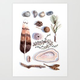 Nature collection # 1 Art Print