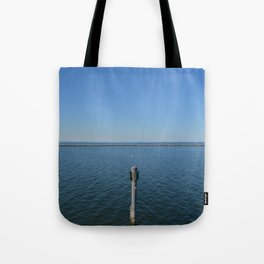Pole In Blue Tote Bag