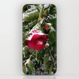 Frozen camellia iPhone Skin
