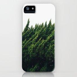 Japanese Tree iPhone Case