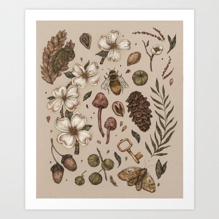 Nature Walks (Light Background) Kunstdrucke