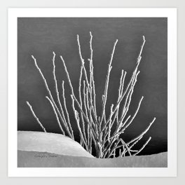Frosted Plants 1 Art Print