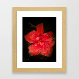 Tanto Amor (II) Framed Art Print