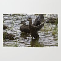 duck Area & Throw Rugs featuring Duck by Isabelle Savard-Filteau