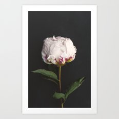 Peony - simply perfect Art Print