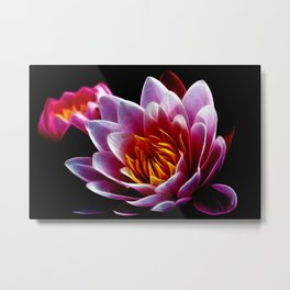 searose Metal Print