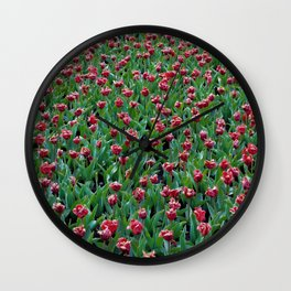 Field full with dark red tulips. Spring. Floral art. Keukenhof. Nature photography. Wall Clock