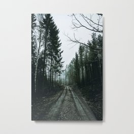 Into the Wild XIII / Sweden Metal Print