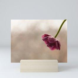Pink Ruffled Tulip Mini Art Print