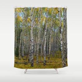 Trembling Aspen's in the Fall, Jasper National Park Shower Curtain