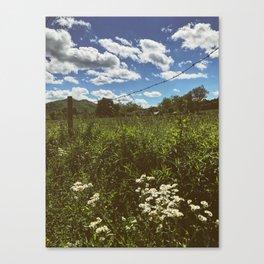 Farm •Appalachian Trail Canvas Print