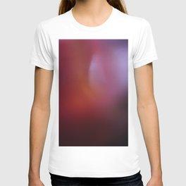 flesh is soil T-shirt