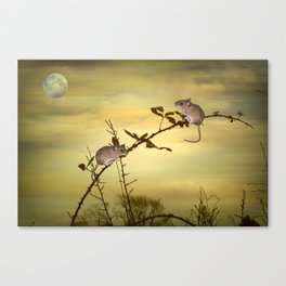 Two Small Mice Canvas Print
