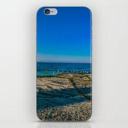 Seagulls at Georgian Bay iPhone Skin