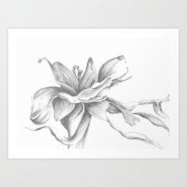 Gental Breeze by Rushingwater Studios Art Print