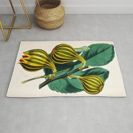 Fig plant, vintage illustration Rug