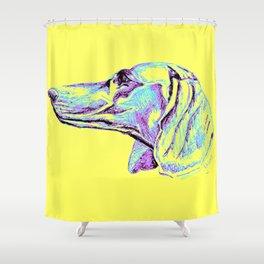 Dackel-Pop Shower Curtain