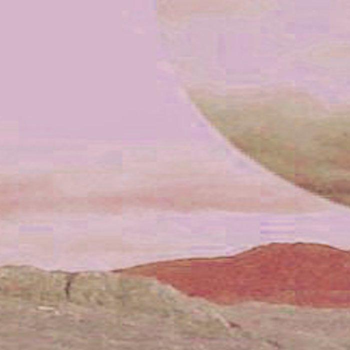 Red Sea Leggings